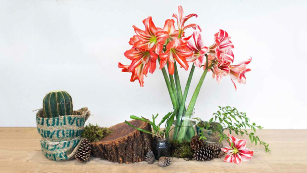 DIY: Eclectic Table Display