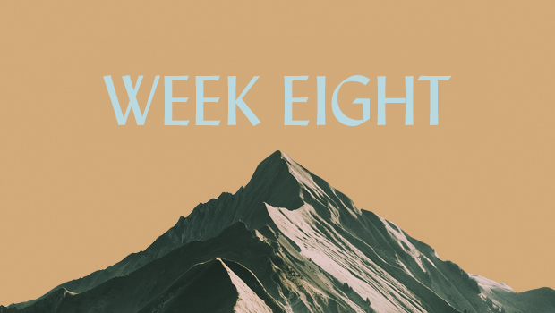 100 Days of Ascent: Week Eight